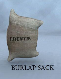 3DUniverse BurlapSack.jpg