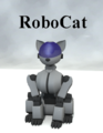 Naoki-RoboCat.png