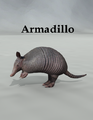 Mostdigitalcreations-Armadillo.png
