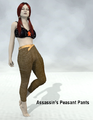 Assassin 21-Assassin's Peasant Pants.png