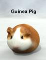 Mostdigitalcreations-GuineaPig.png
