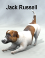 MostdigitalCreations-JackRussell.png