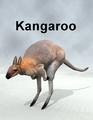 MostdigitalCreations-Kangaroo.png