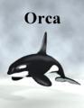 Zock-ORCA.png