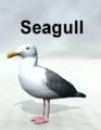 Mostdigitalcreations-Seagull.png