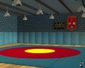 Wrestling Set 2.jpg