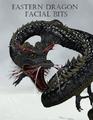 Urdwolf-Eastern Dragon Facial Bits.png