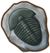 SOS Pioneers Items Treasure Ancient Bug Fossil.png
