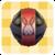 Sos items black rabbit yarn plus.png
