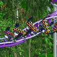 Condor Ride RCT2 Icon.png