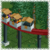 Small Monorail Cars RCT1 Icon.png