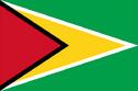 GuyanaFlag.png