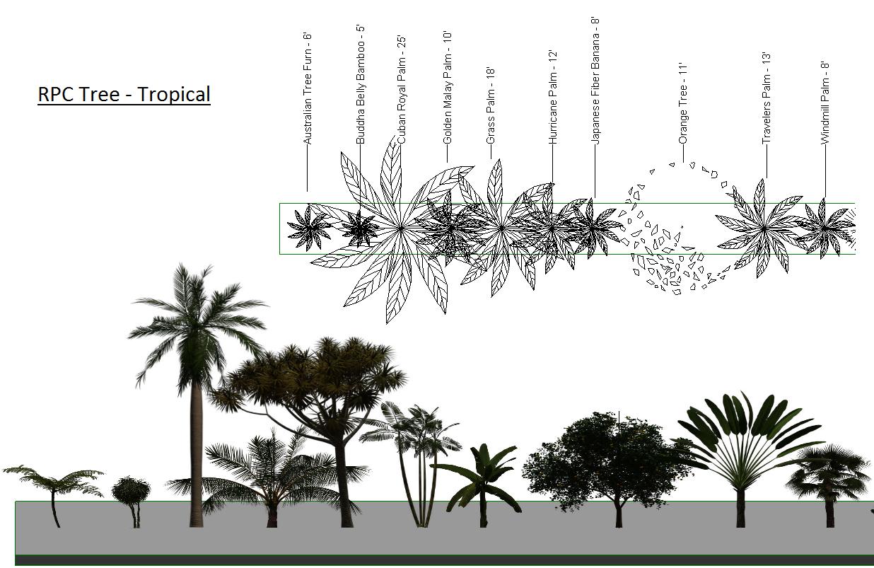 RPC Tree - Tropical rfa - Real World Revit