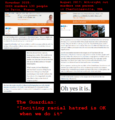 Guardian incites racial hatred after charlottesville murder.png