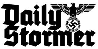 The Daily Stormer logo 1.png