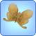 Zephyr Metalmark Butterfly.png