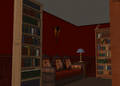 Amar's Restaurant basement bookshelves and couch.png