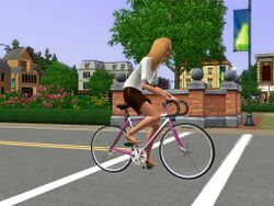 Bleeh Simself Bike.jpg
