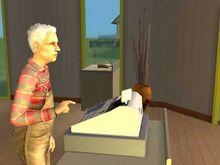 Cash Register (The Sims 2).jpg