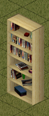 Ts1 cheap pine bookcase.png