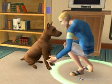 The sims 2 pets 4.jpg