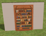 Ts2 very mysterious shelving.png