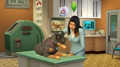 TS4 Cats and Dogs 3.jpg