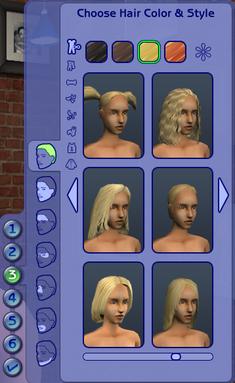 Hair & Face.png