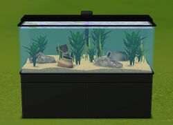 All My Fishes Aquarium.jpg