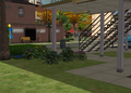 Newbie house - shrubs and hedges.png