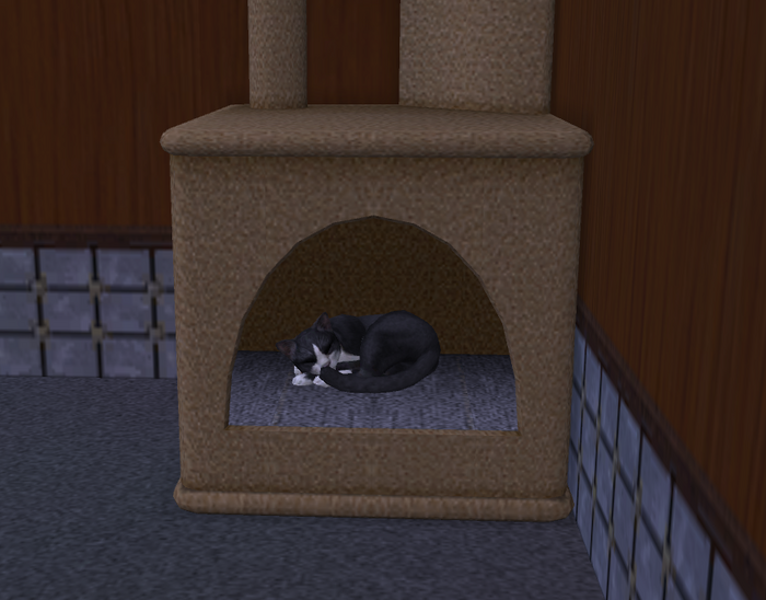 Oreo sleeping.png