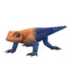 Agama Lizard.png