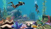 Underwater hunting.jpg