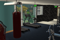 Amar's Hangout gym 3.png