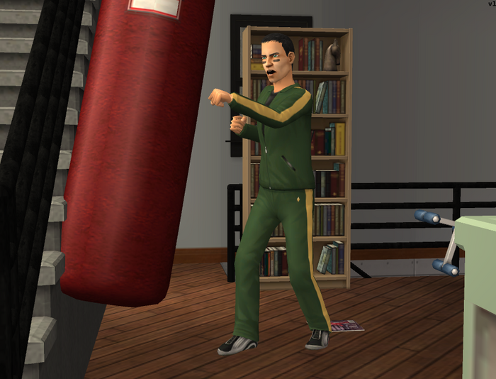Serge using the punching bag.png