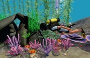 Scuba diving island paradise.jpg
