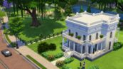 TS4 Build Press Print 4.jpg