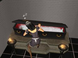 Vampire Coffin.jpg