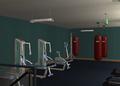 Amar's Hangout gym 2.png