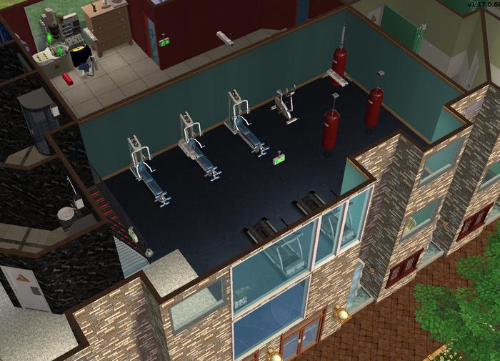 Amar's Hangout gym 1.png