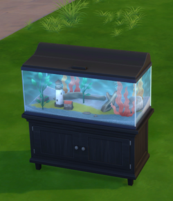 Harbor in a Box Aquarium.png