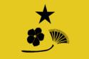 Flag of Wed Shams