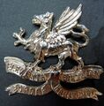 11th Border Regiment cap badge (white metal).jpg