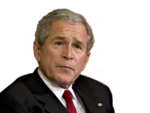 George-W -Bush.png