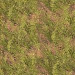 Cerealfarmgrow.jpg