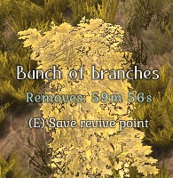 Bunch of Branches
